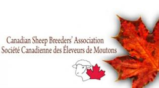 Canadian Sheep Breeders' Association